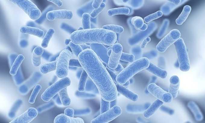 Застой крови в области железы создает благоприятные условия для жизнедеятельности патогенных микроорганизмов