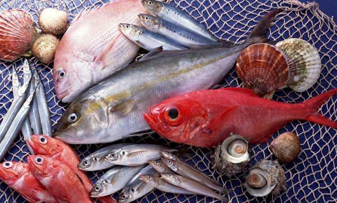 Основой рациона при геморрое должен стать преимущественно рыба — нежирных сортов