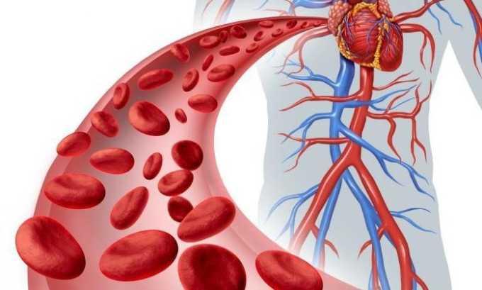 Венотоники улучшают кровообращение, что важно в процессе лечения геморроя