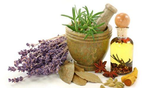 Народные средства имеют вспомогательный характер и дополняют медикаментозную терапию