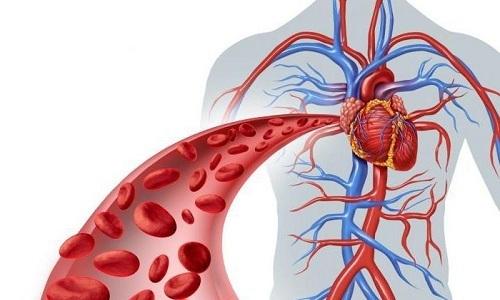 Любители банных процедур уверенны, что усиление кровотока только положительно скажется на состоянии человека, который страдает от геморроя
