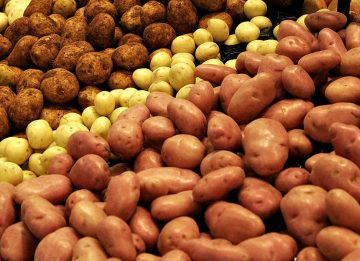 Как применять картофель при геморрое?