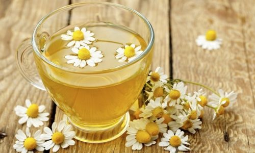 Для лечения геморроя 1 стадии полезно пить отвар ромашки