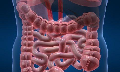 Терапия геморроя и простатита включает восстановление работы кишечника